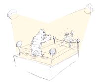 Ein Bär im Boxring